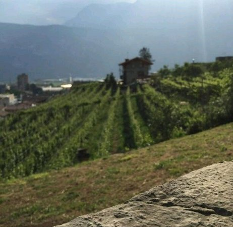 Francavilla Bisio, Italija: B&B Le Strade Del Gavi