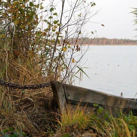 Ольманская Кошана, Беларусь: Большое Засоминое, Ольманы