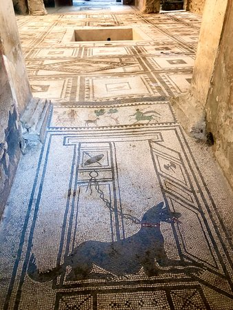 Alex Tour Pompeii