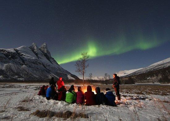 北极探索之旅