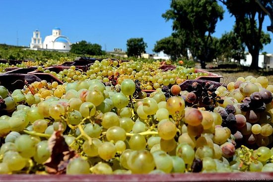 Excursão semi-privada ao vinho de...
