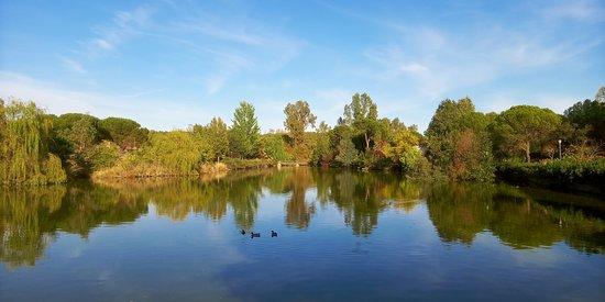 Parque de Berlanga