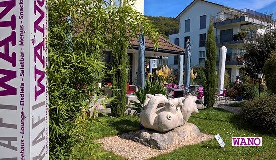 Niederweningen, Ελβετία: View in the garden...