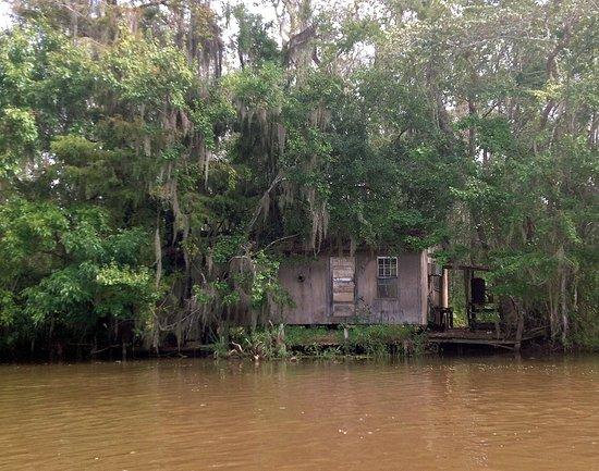 Dr Wagner S Honey Island Swamp Tours Slidell 2019 All