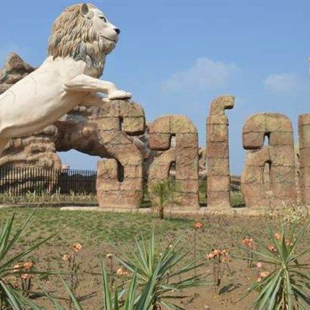 Etawah, India: Lion safari