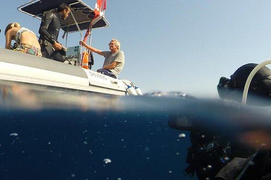 Evasioni Blu Diving Ustica