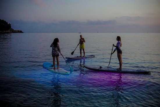 Metta Float Yoga & SUP