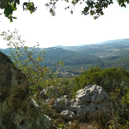 Shtula, Israel: Hiking Trail in the Gallilie Forest
