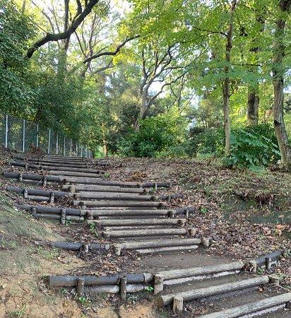 Egota-no-Mori Park