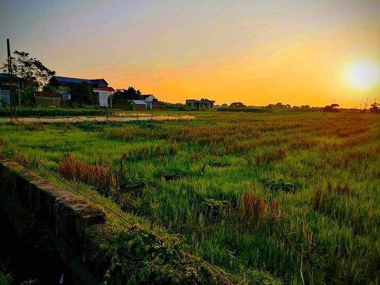 Vinh Phuc Province, Vietnam: https://fpttelecom24h.org/mua-smar-tv-hay-fpt-lay-box/