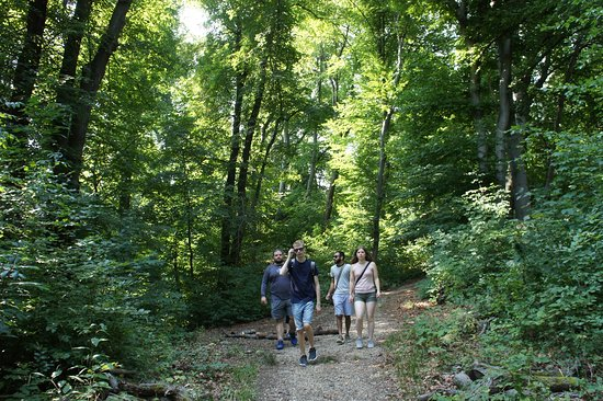 Trails of Budapest Hiking Tours