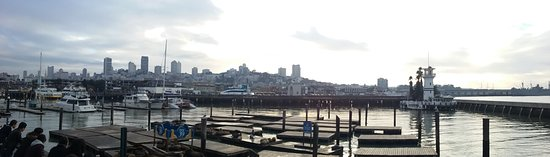Fisherman's Wharf: Road trip: San Francisco