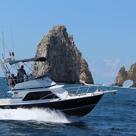 Fin Chaser Cabo