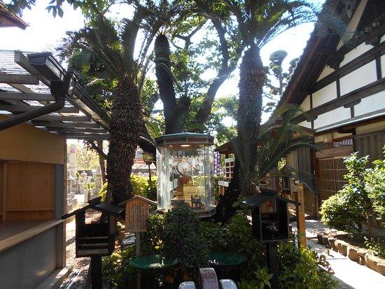 Shinko-in Temple