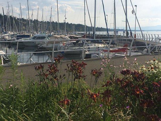 Port de rives thonon les bains 2020 ce qu 39 il faut - Camping thonon les bains avec piscine ...