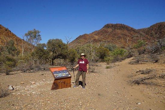 Флиндерс, Австралия: Interesting information on Flora and Fauna
