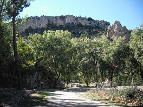 Ruta de los Nogales Centenarios