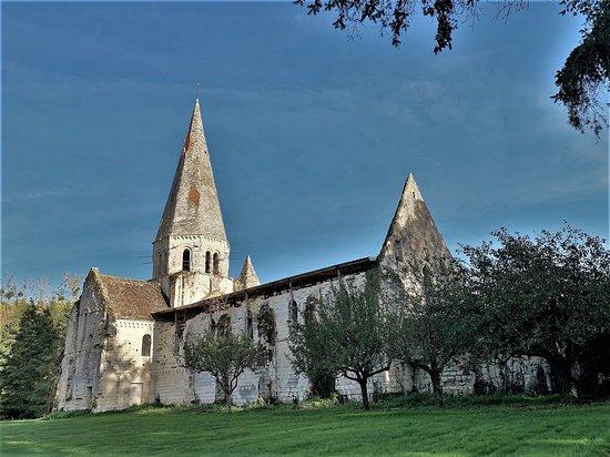 Ancienne abbaye Notre-Dame d'Aigues-Vives