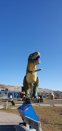 Hammerhead Scenic Tours Calgary 2020 All You Need To