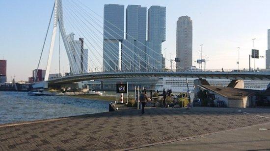 Rotterdam összekapcsolás
