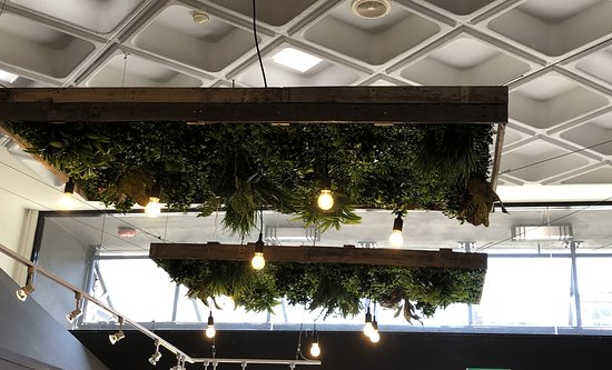 The Perfect Shot Cafe: Perfect Shot ceiling - worth a second look