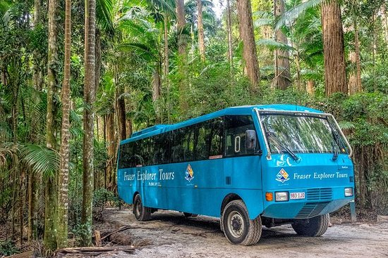 Fraser Island 4WD Day Tour from...