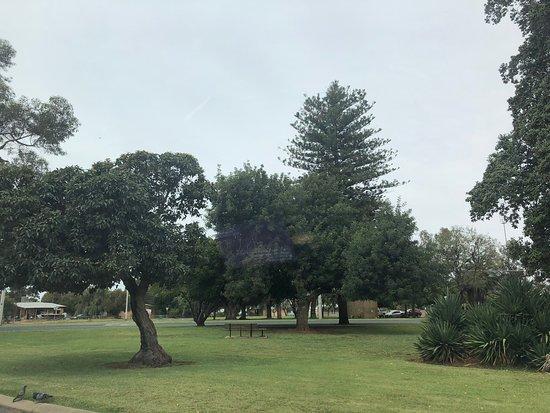 Sturt Park
