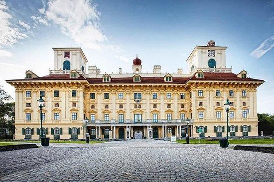 Visita guiada por el Palacio de Esterhazy