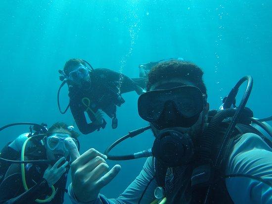 Octopus Diving Center