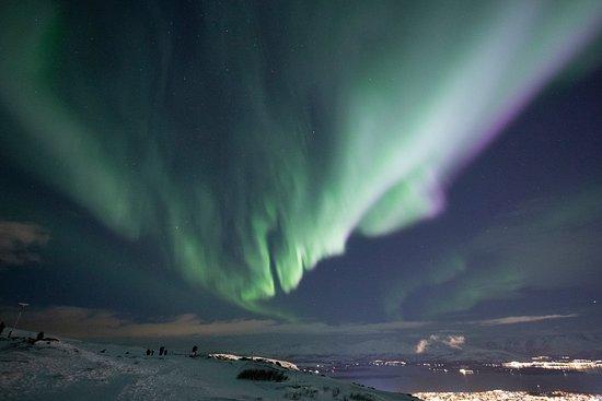 Tromso Flexitour