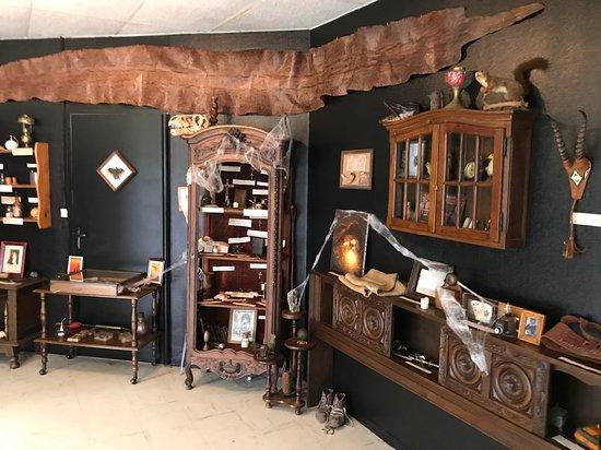 Cabinet Mirifique du Pr Berlupin