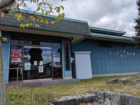 Yakunocho Fossil Local Museum