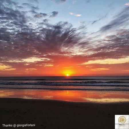 Kola Beach Resort: You've never seen a sunrise if you've never been in Africa.