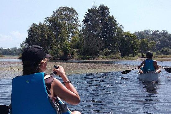 Noosa Hinterland Scenic Canoe & FAT...