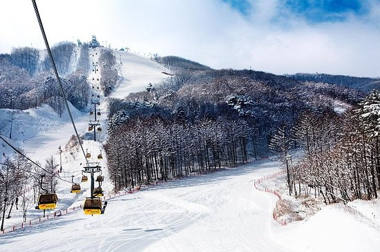 4Days / 3Nights Winter Korea (allt ...