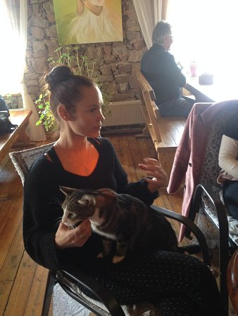 Sabile, ลัตเวีย: Уютный зал, об истории любезно рассказала хозяйка Ивета, а помогал ей кот Макаронс.