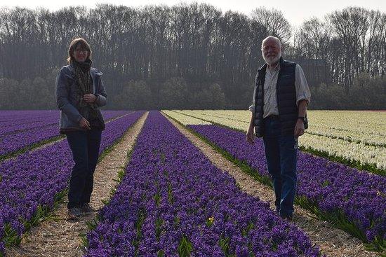 Keukenhof + Amsterdam National Park Tour