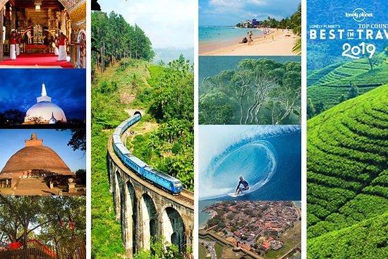 Navin Lanka Tours
