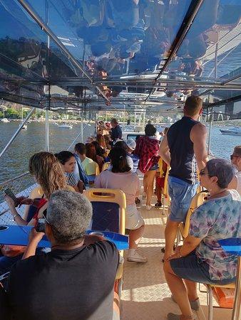 Catamaran Ride in Rio de Janeiro - Rio Boulevard Tour: O barco do passeio.