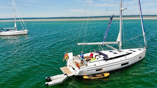 Denmark: Robbensafari mit sailingforyou