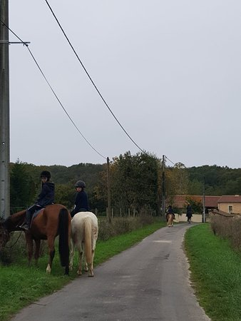 Riding Club and Pony Club Forest Moulière