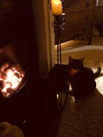Horwich, UK: Our style of bonfire 🔥 night 😌 🐈 🍷 😊 🤫 🍷 🔥 🐈