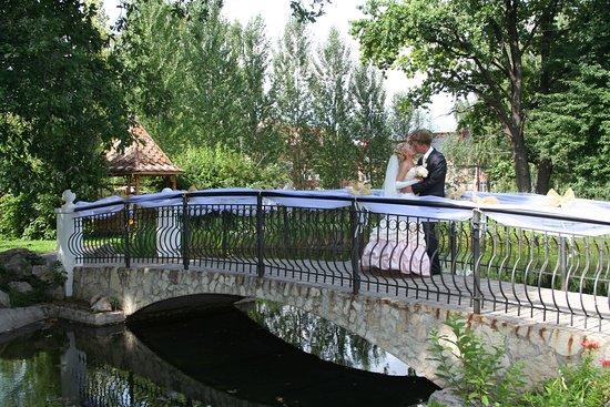 Pir: Свадьбы с выездной регистрацией в нашем красивом парке