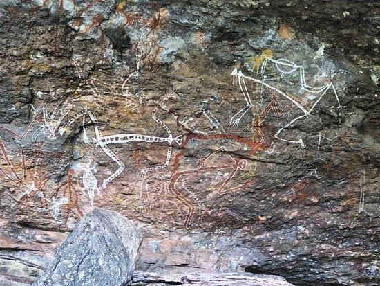 Kakadu Tours and Travel