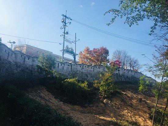 卧龍公園照片