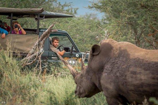 Hluhluwe-Imfolozi公园全日5大野生动物园之旅