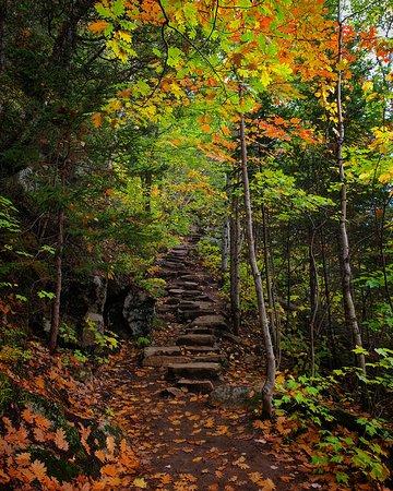 Saguenay Fjords National Park, QC, Canada Hiking trail: Sentier de la statue