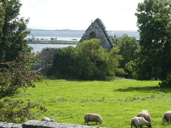 Annaghdown Cathedral & Abbey