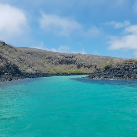 Pinzon, Ecuador: Come make the best snorkeling trip with us
