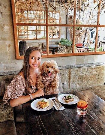 Pet friendly restaurant 🐶💕